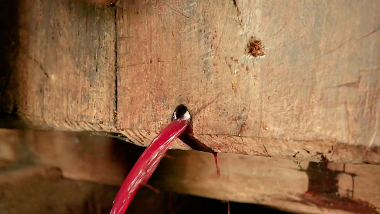 wine-handmade-grapes-and-vibes-historical-production